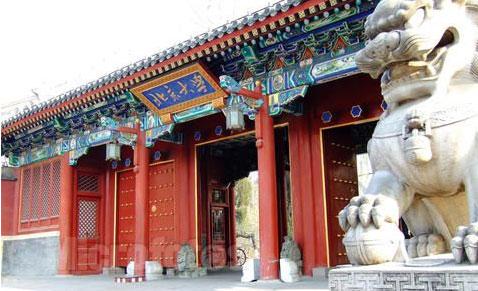 北京大学网络教育